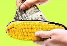 как перевести деньги на Кукурузу